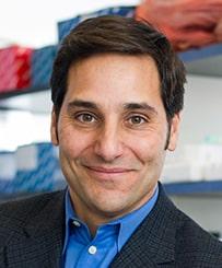 Carl Novina, MD, PhD